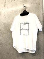 1万円以下の冷感触感の白Tシャツ